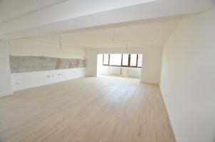 Apartament de vanzare 3 camere zona Herastrau-Satul Francez, Bucuresti 123 mp