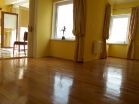 Apartament penthouse de vanzare 4 camere zona Universitate, Bucuresti 210 mp