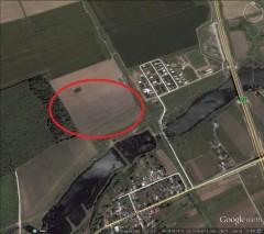 Land for sale, Moara Vlasiei area, Ilfov county, 125,000 sqm