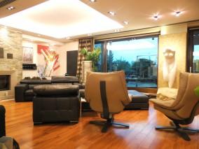 Apartament de vanzare 5 camere tip penthouse zona Nord- Herastrau, Bucuresti 488 mp