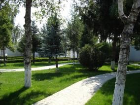 Vila 6 camere, zona Otopeni, 800mp