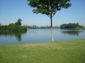 Vila de inchiriat 5 camere zona Baneasa - Parc Herastrau, Bucuresti 400 mp