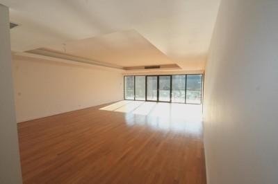 Apartament de vanzare Bucuresti 4 camere zona Nordului 310 mp