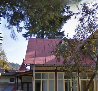 House for sale 4 rooms Busteni 260 sqm