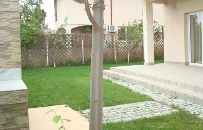Casa de vanzare Bucuresti 5 camere zona Straulesti 276 mp
