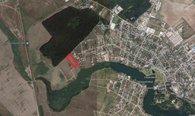 Land for sale Mogosoaia, Ilfov 10.000 sqm