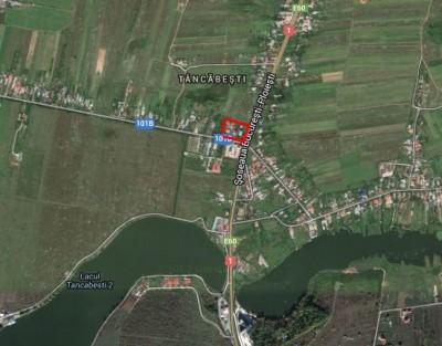 Teren de vanzare zona Snagov 4.000 mp