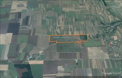 Teren intravilan de vanzare km 37 Bucuresti - Giurgiu, 80 Ha