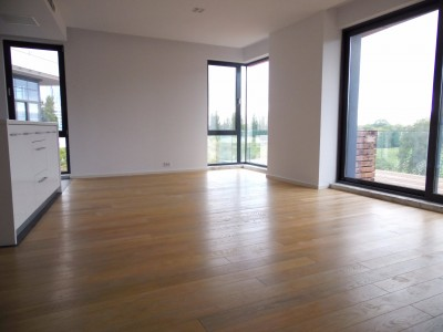 Apartment for rent 5 room Floreasca - Herastrau area, Bucharest 220 sqm