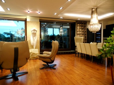 Apartment for rent 5 rooms penthouse type North area- Herastrau, Bucharest 488 sqm