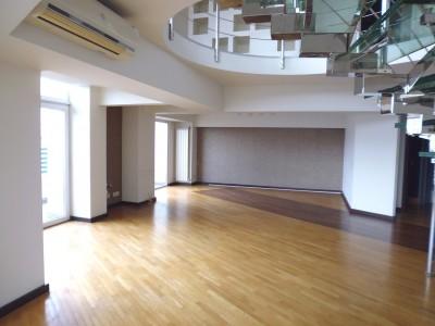 Duplex de vanzare 4 camere zona Bulevardul Unirii, Bucuresti 264 mp