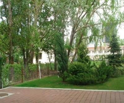 Imobil birouri de vanzare zona Grozavesti, Bucuresti 1.400 mp