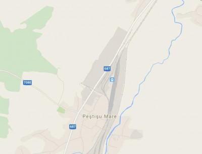Teren de vânzare Peștișu Mare, Hunedoara 29017 mp