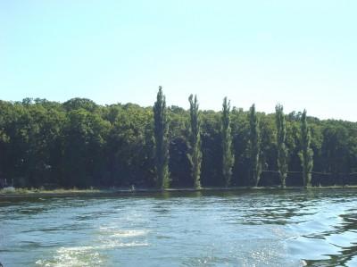 Teren de vanzare zona Izvorani-Snagov,Ilfov 185000 mp