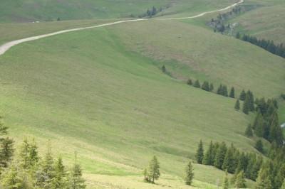Teren de vanzare zona Sinaia, Prahova 30000 mp