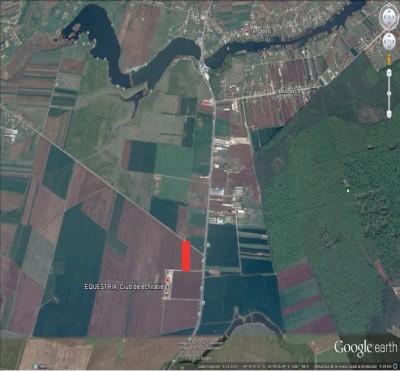 Teren de vanzare zona  Tancabesti, Ilfov 35000 mp