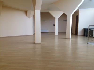 Vila de inchiriat 5 camere zona Gheorghe Ionescu Sisesti, Bucuresti