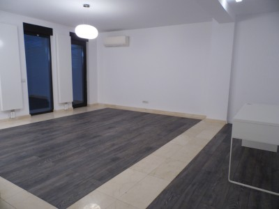 Villa for rent 7 rooms Domenii area, Bucharest 411 sqm