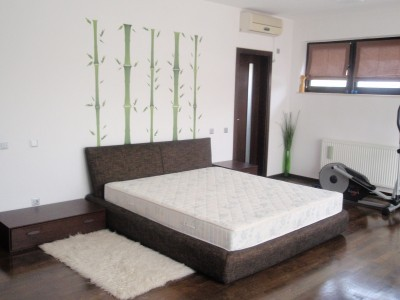 Villa for rent 8 rooms North area - Herastrau Park, Bucharest 550 sqm