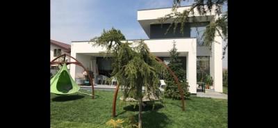 Vila de vanzare 7 camere zona Moara Vlasiei-Padure lac, Ilfov 403 mp