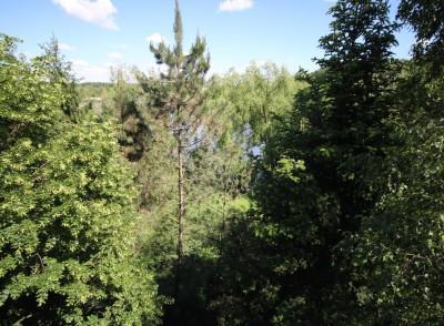Vila de vanzare  7 camere zona Snagov, Ilfov 330 mp