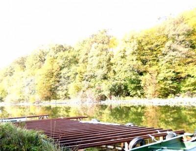 Vila de vanzare 7 camere zona Snagov-Lac,Ilfov 5760 mp