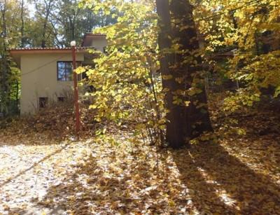 Vila de vanzare 7 camere zona Snagov-Lac,Ilfov  1371 mp