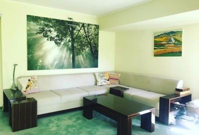 Vila de vanzare 9 camere zona Traian-Calea Calarasilor, Bucuresti 556 mp