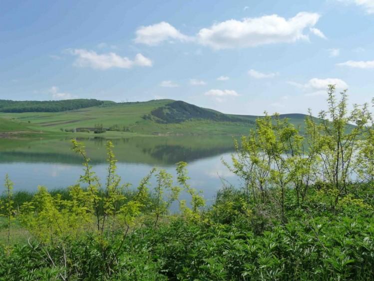Teren de vanzare, centrul Transilvaniei, 102 ha