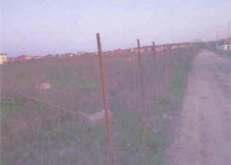 Teren executare silita in zona Padurea Baneasa, 8747mp