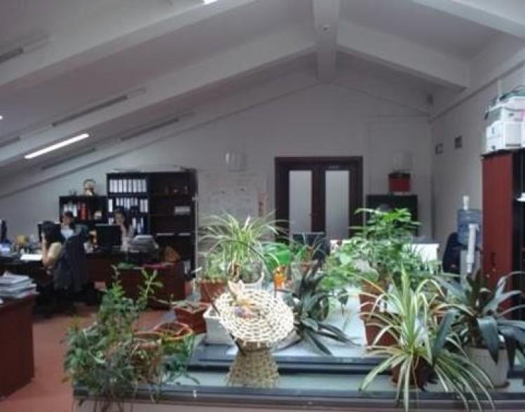 Imobile de birouri de vanzare zona Universitate, Bucuresti 4871.95 mp